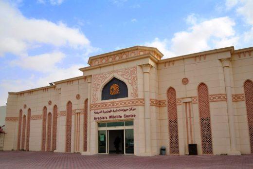 Центр дикой природы Аравии